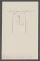 Dentalium acuminatum - - Print - Iconographia Zoologica - Special Collections University of Amsterdam - UBAINV0274 081 10 0009.tif