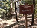 Denver Mountain Park Property; MFP.jpg
