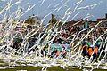 Derby Radomia 2010 04.jpeg