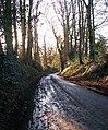 Descending Pratts Hill - geograph.org.uk - 1605750.jpg