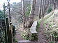 Descending the Summit Trail - geograph.org.uk - 340062.jpg