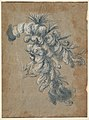 Design for a Lavish Headdress with Feathers MET DP823551.jpg
