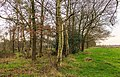 Diakonievene. Natuurgebied van It Fryske Gea 023.jpg