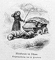 Die Gartenlaube (1887) b 064 2.jpg