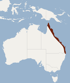 Distribution of Nyctimene robinsoni.PNG