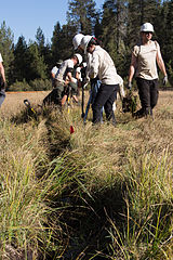 File ditch preparation 8289227220 jpg wikimedia commons for Preparation of soil wikipedia
