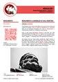 Divulgo Wiki Loves Toscana 02 Statua Scarlino.pdf