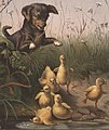 Dog Frightening Ducklings by Boston Public Library (cropped).jpg