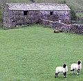 Double Field Barn nr Angram - geograph.org.uk - 817087.jpg