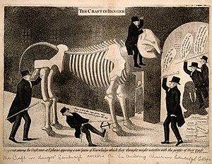 John Barclay (anatomist) - Satirical etching by John Kay: Barclay attempts unsuccessfully to enter the University of Edinburgh as its new professor of comparative anatomy astride an elephant skeleton, opposed by the incumbent medical professors.