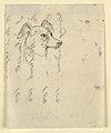 Drawing, Dog's Head, probably Milo (a Pointer), ca. 1862 (CH 18369899).jpg