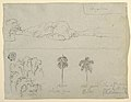 Drawing, Sketches from Colombia- Bank of a River or Bay, and Trees., 1853 (CH 18200649).jpg