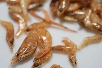 Dried shrimp - Image: Dried river shrimp