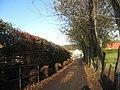 Driveway to Burnbank - geograph.org.uk - 1579764.jpg