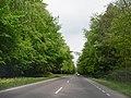 Droga nr 11 na odcinku Kołobrzeg - Koszalin - panoramio.jpg