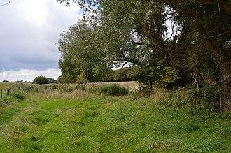 Wildlife Trust for Bedfordshire, Cambridgeshire and Northamptonshire - Image: Dropshort Marsh 2