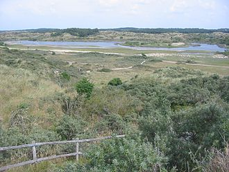 Zuid-Kennemerland National Park - Image: Duinen in Nationaal Park Zuid Kennemerland