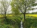 Dyke on the Trent Valley Way near Shelford - geograph.org.uk - 1074170.jpg