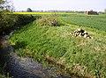 East Glen River - geograph.org.uk - 487289.jpg