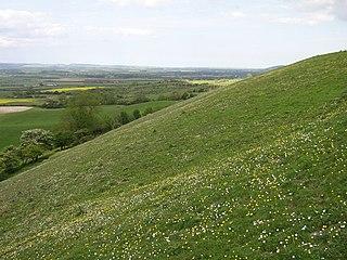 East Heslerton village in United Kingdom