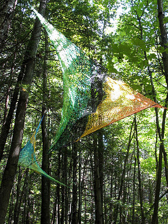 Environmental art - Edith Meusnier, Artefact, Bois de Belle Rivière, Québec, 2010