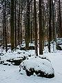 Eichig Felsenlabyrinth Winter-20210110-RM-160425.jpg