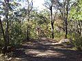 Engadine NSW 2233, Australia - panoramio (158).jpg