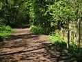 Entrance to Joyden's Wood - geograph.org.uk - 1279336.jpg