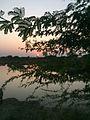 Evening of india.jpg