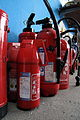 Extinguishers with cubs IMG 4850.JPG