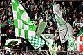 FC Admira Wacker vs. SK Rapid Wien 2015-12-02 (159).jpg