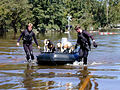 FEMA - 191 - Photograph by Dave Saville taken on 09-23-1999 in North Carolina.jpg