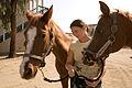 FEMA - 33363 - A Callifornia Horse owner exercises her horses at the temporary animal evacuee shelter.jpg