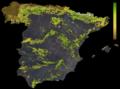 FLII Spain.png