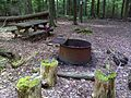 FLT M06 4.5, 0.2 on blue Marg Hinz mi - Marg Hinz Bivouac with fire ring, table, outhouse, and piped spring - panoramio.jpg