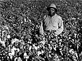 Farm worker in Cotton Field -- 1940s.jpg