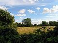 Farmland, Woolhampton - geograph.org.uk - 29425.jpg