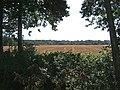 Farmland adjacent to Shrawley Wood - geograph.org.uk - 1484870.jpg