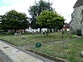 Farnham, St Andrew's Churchyard (9) - geograph.org.uk - 1991406.jpg
