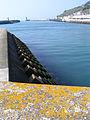 Fecamp port.JPG