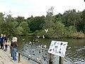 Feeding the birds, Golden Acre Park - geograph.org.uk - 259277.jpg