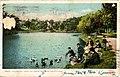 Feeding the ducks, Fellsmere Reservoir (NBY 2068).jpg