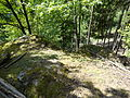 Felsen in der Dehl (Hoch-Weisel) 17.JPG