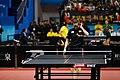 Feng Tianwei ATTC2017 4.jpg