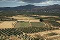Festos - Valley of Messara 2.jpg