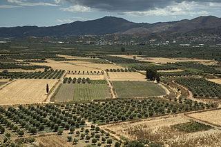 plain in Greece