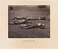 Field Where General Reynolds Fell, Gettysburg MET DP274633.jpg