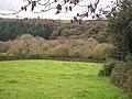 Field near Ledgerland, Llanteg - geograph.org.uk - 1011229.jpg