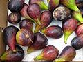 Figues noires au marché de Sorgues.jpg