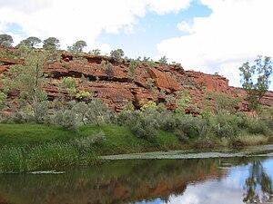 Finke River - The Finke River after rain, Northern Territory